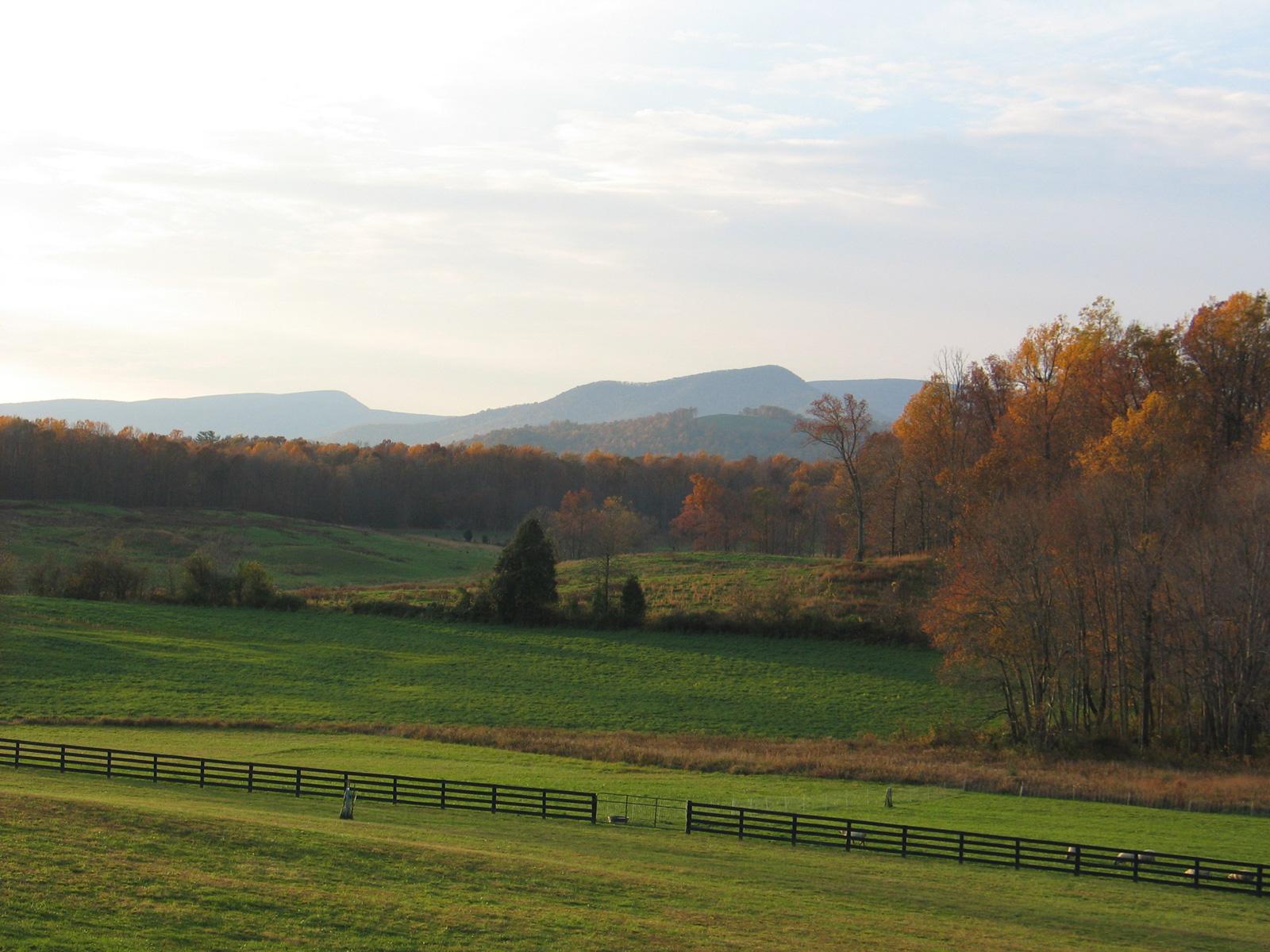 autumnslide01