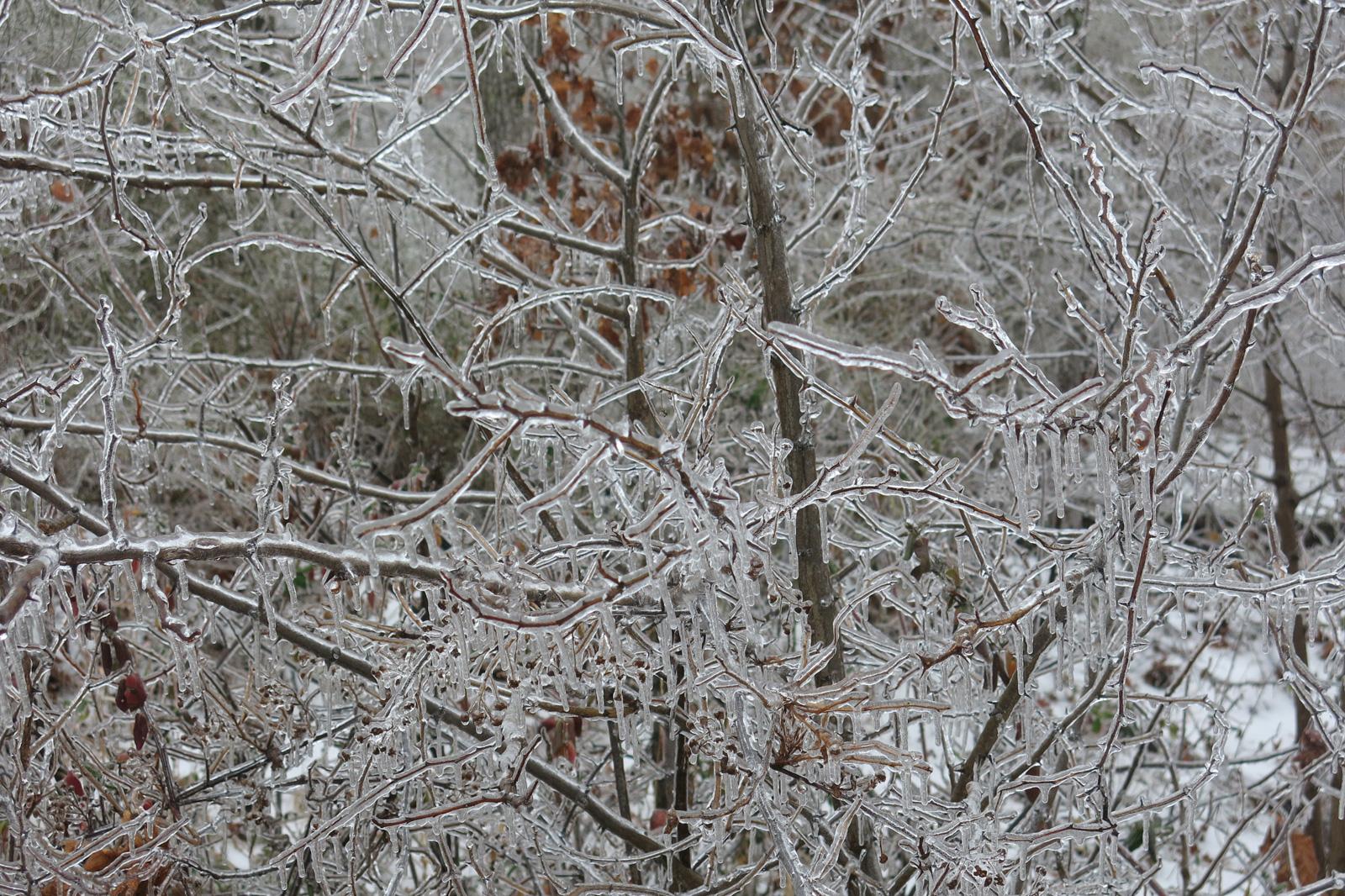 winterslide03