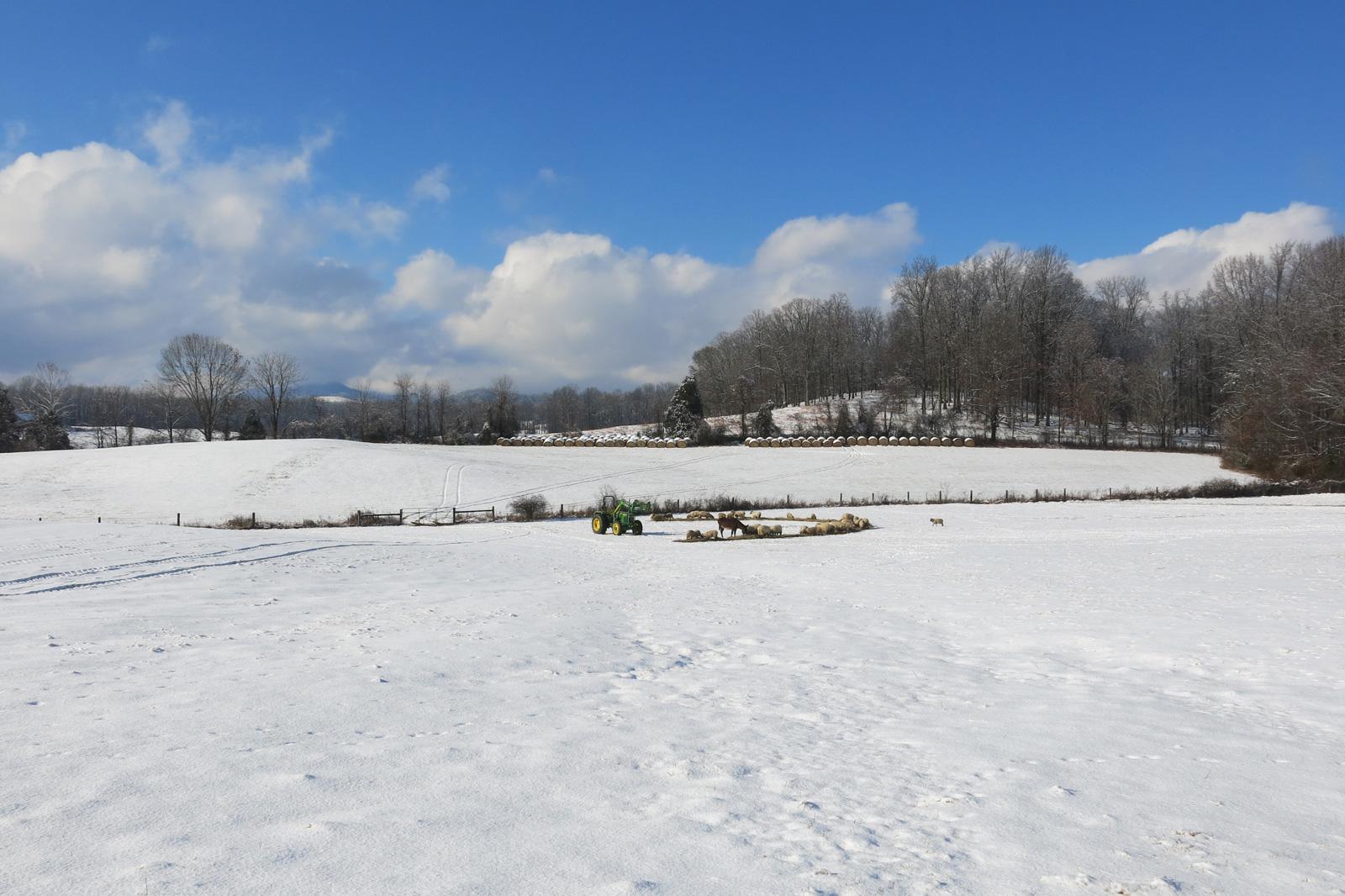 winterslide04