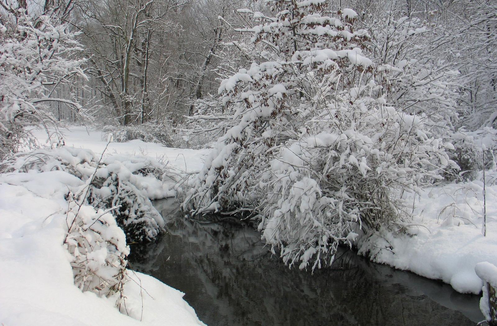 winterslide08