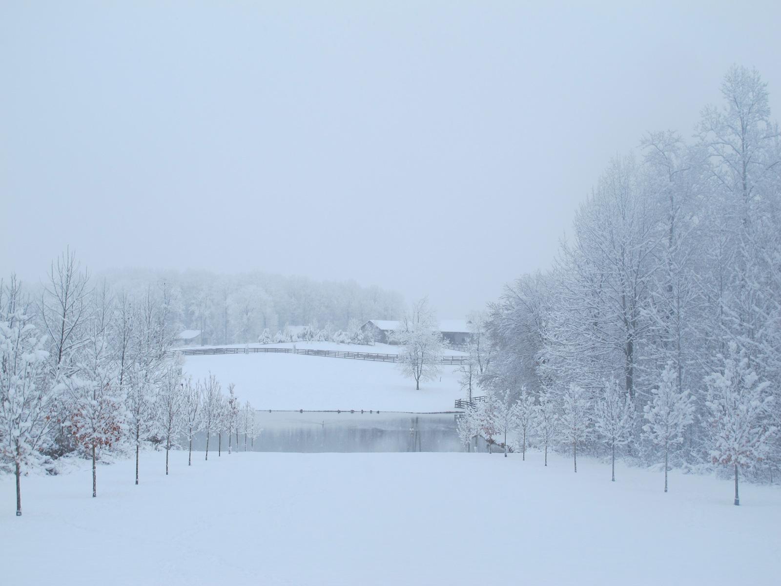 winterslide13