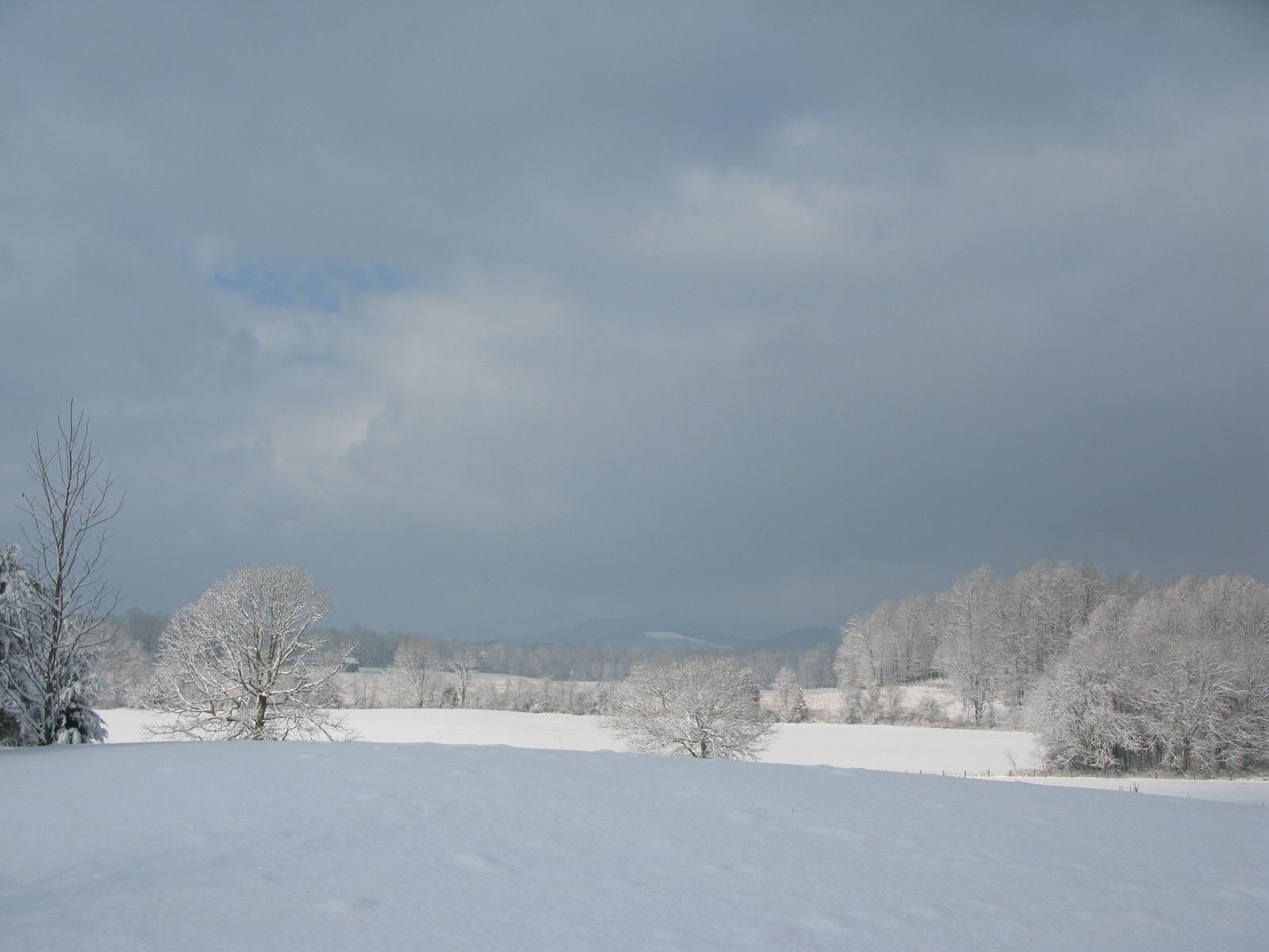 winterslide22