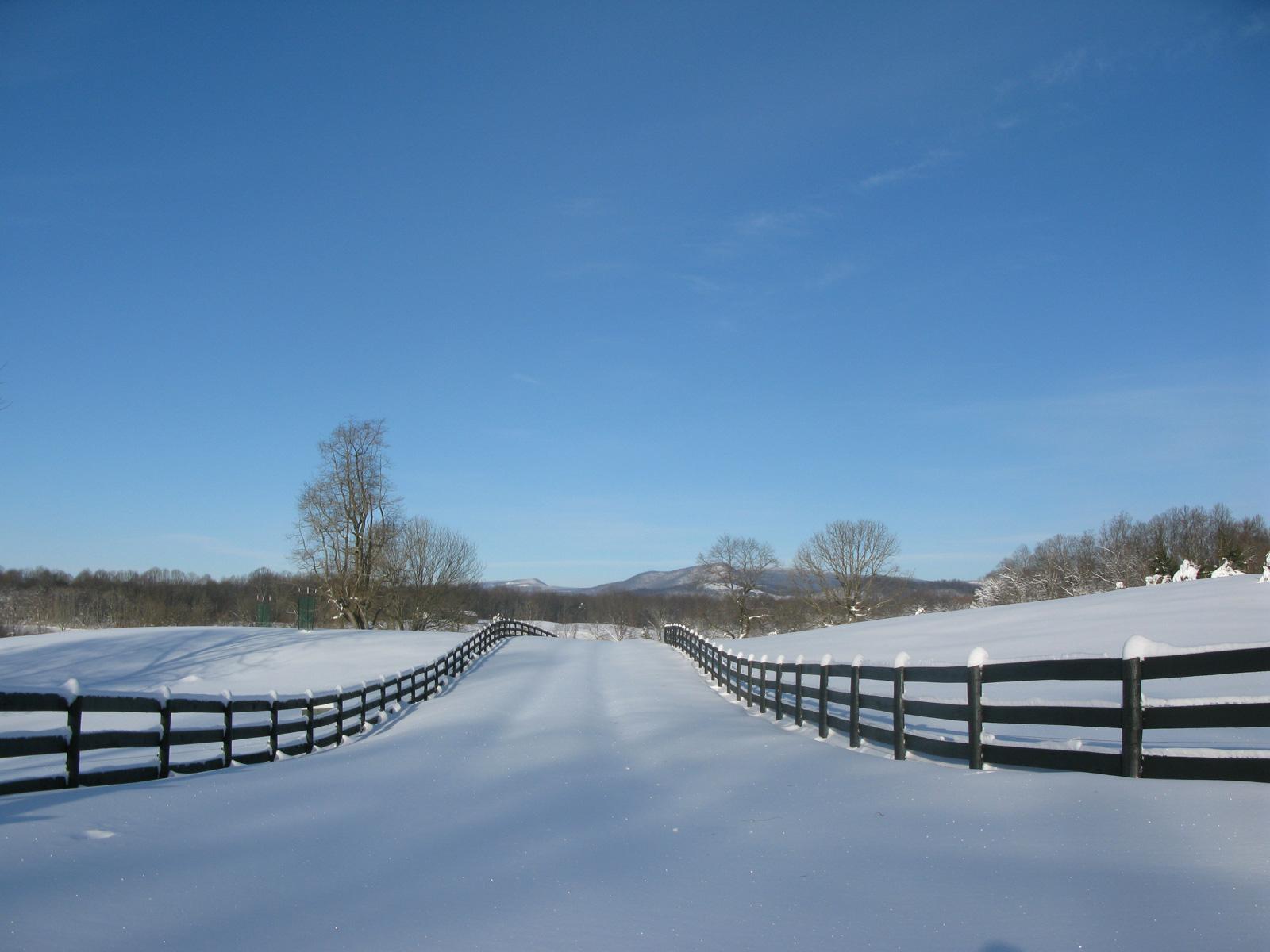 winterslide23
